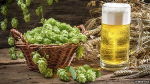 _74866092_beer-and-hops